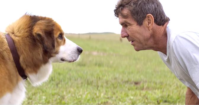 A DOG'S PURPOSE (2017): New Trailer From Josh Gad, Dennis Quaid, Britt Robertson…