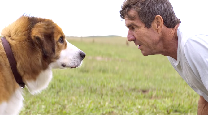 A DOG'S PURPOSE (2017): New Trailer From Josh Gad, Dennis Quaid, Britt Robertson…