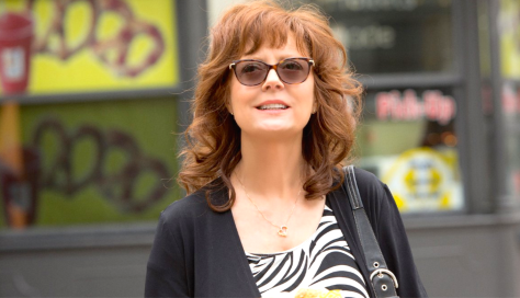 The Meddler (2016), Susan Sarandon