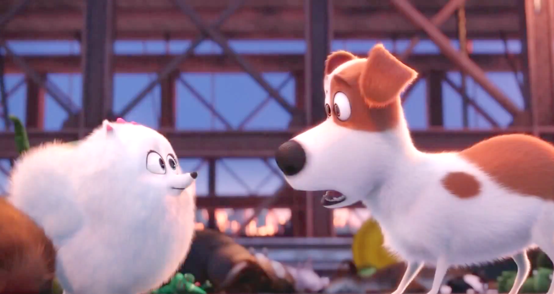 The Secret Life Of Pets (2016), Gidget (Jenny Slate), Max (Louis C.K.)