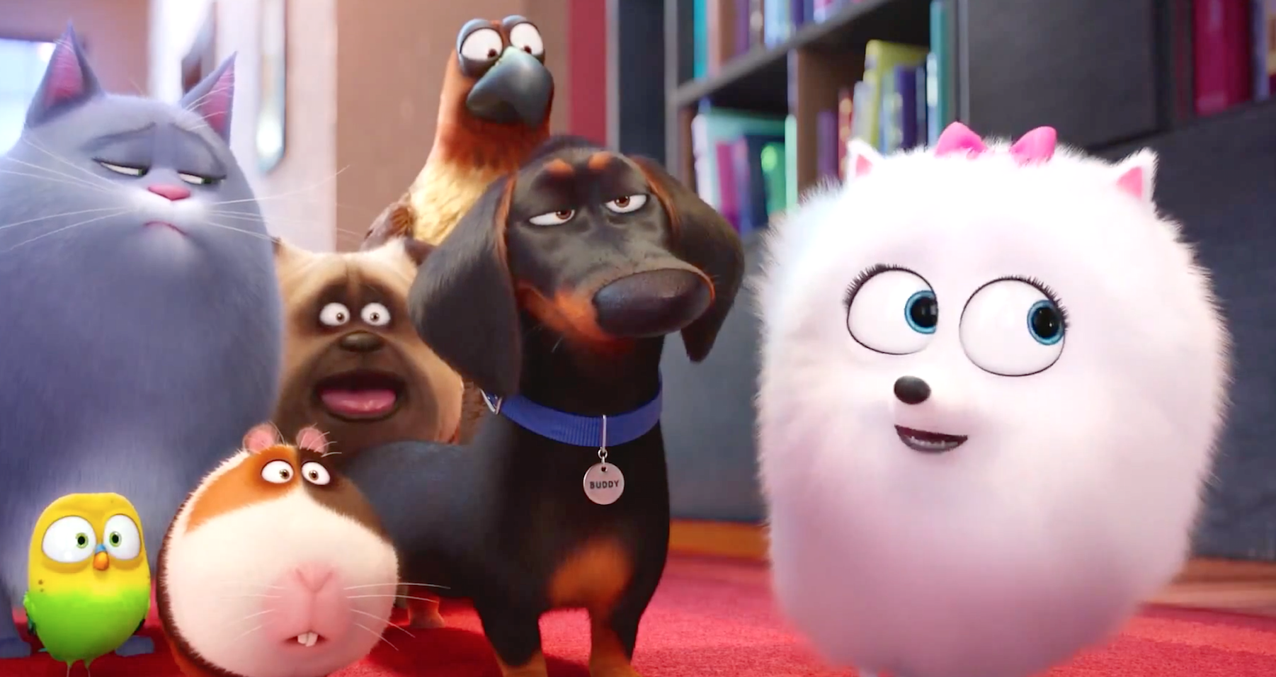 The Secret Life Of Pets 2016 Fun Funny Cute The Movie My Life