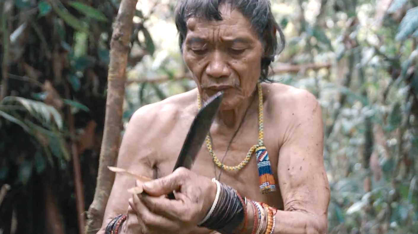 TAWAI – A VOICE FROM THE FOREST (2017): New Trailer For