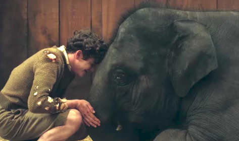 Zoo (2018), Art Parkinson