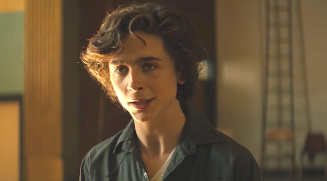 Beautiful Boy (2018), Timothée Chalamet