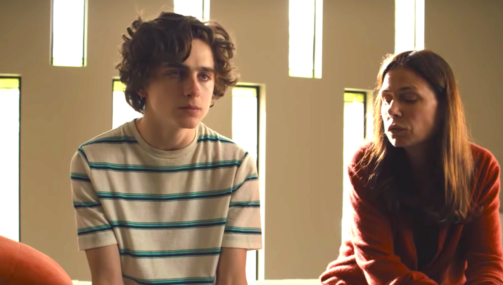 Beautiful Boy (2018), Timothée Chalamet, Maura Tierney