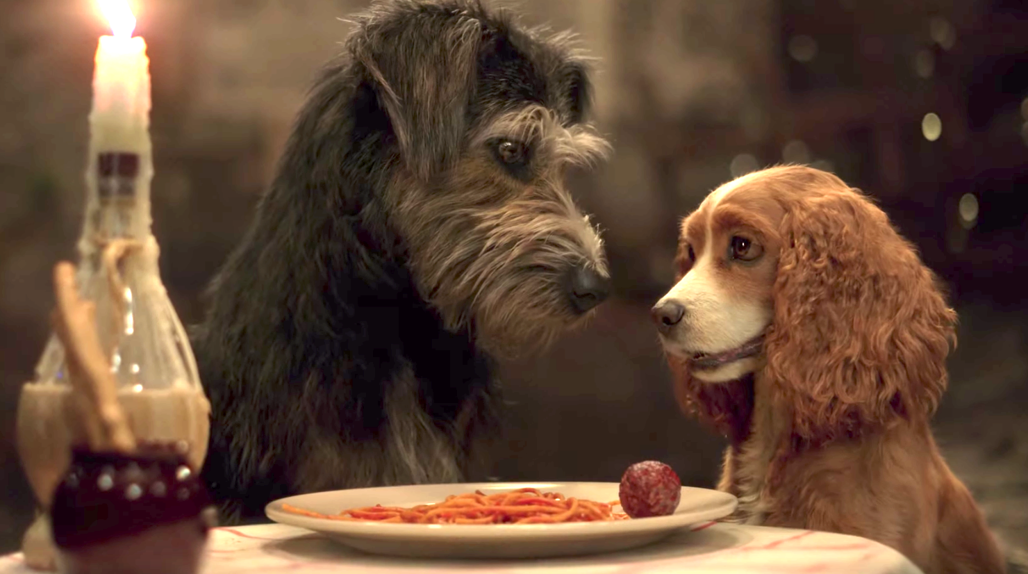 Lady And The Tramp (2019), Disney+, Walt Disney Studio